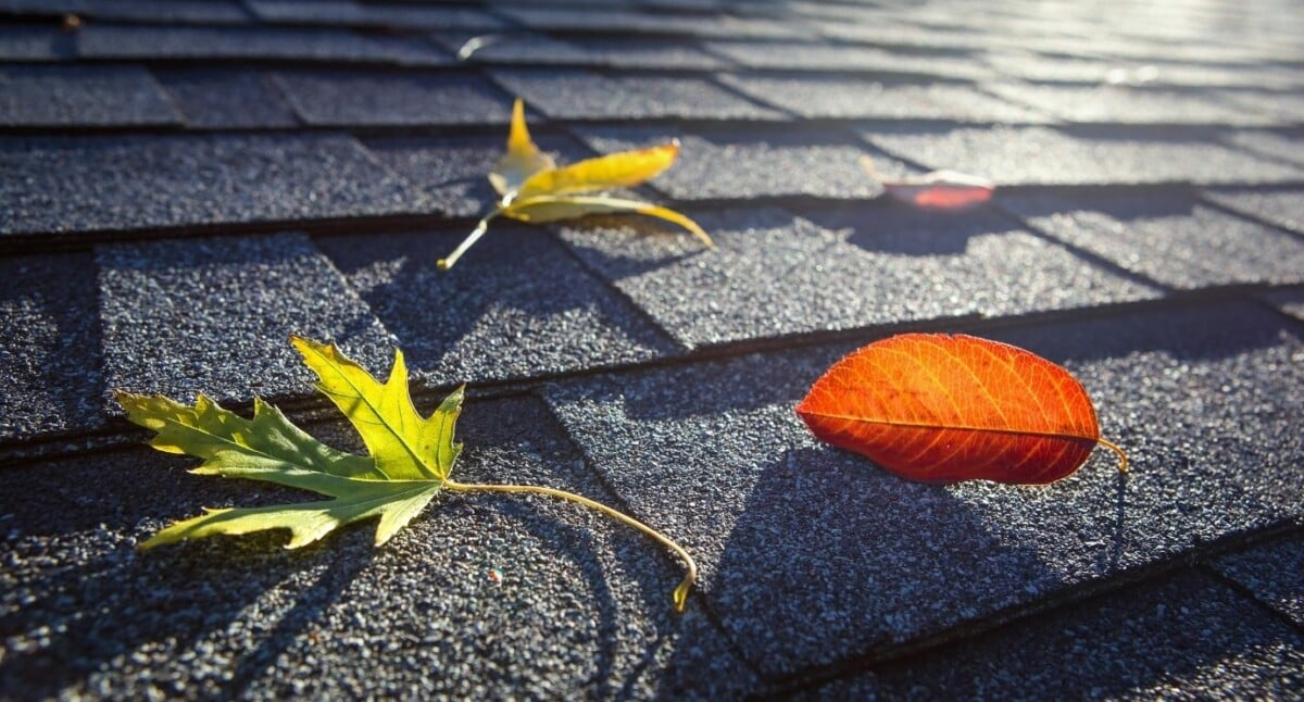 Tips for Maintaining Your Roof This Fall