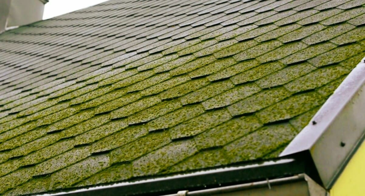 Common Signs You Need To Replace Your Roof